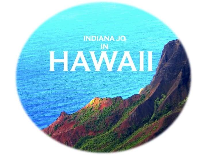 Hawaii Button