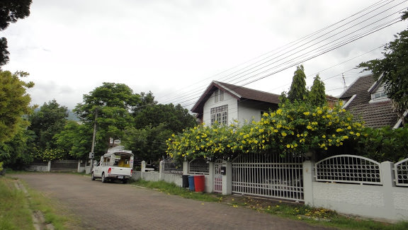 Recommended Spicy Thai Hostel Chiang Mai