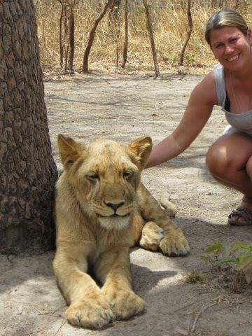 Fathala Wildlife Reserve Walk With Lions