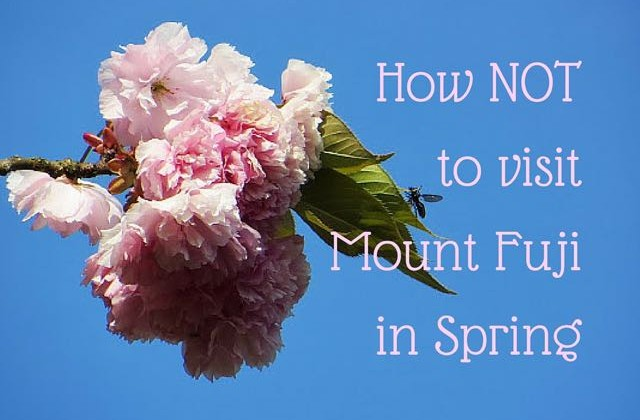 How NOT to visit Mount Fuji in Spring (1)