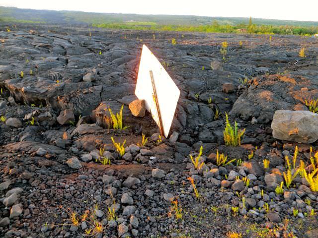 Buried Sign Hawaii Big Island