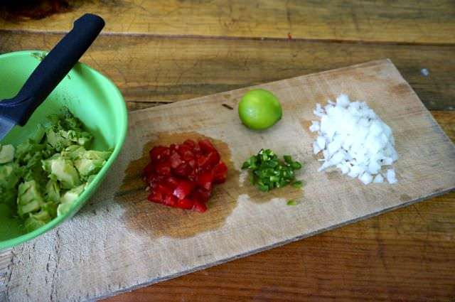 Quick and Easy Guacamole Recipe 15