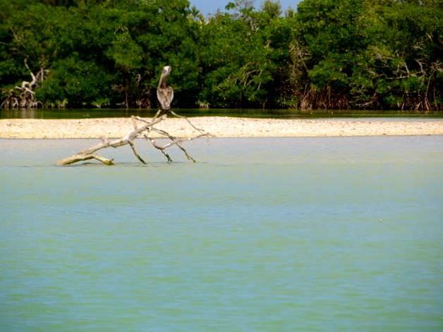 Best Things to Do in Yucatan Peninsula
