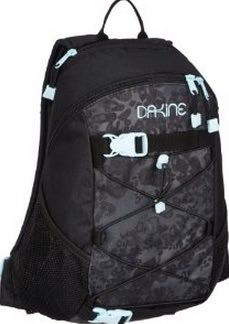 Best backpacks for travel Dakine