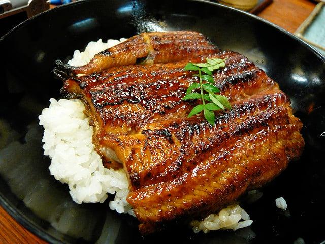 What to eat in Japan Teriyaki