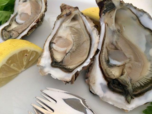 sardinian food oysters