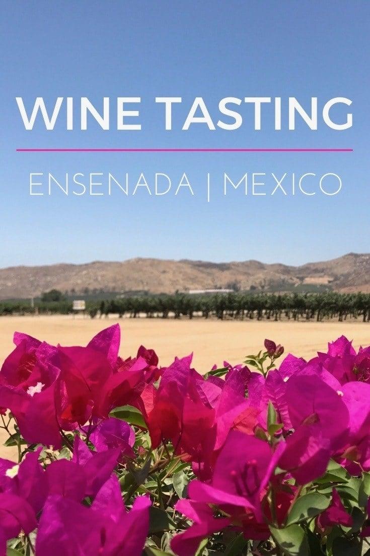 pink flowers looking over the desert of bajan california in Ensenadas wine region