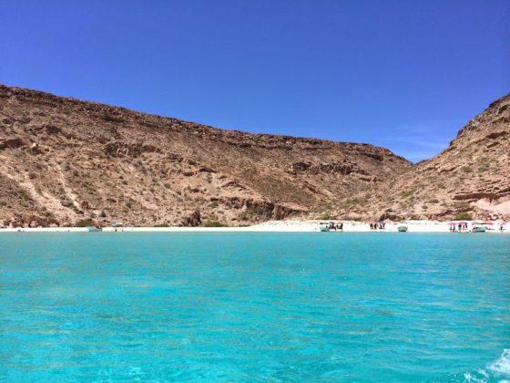 Isla Espiritu Santo Tour Swimming with Sea Lions in Mexico beach