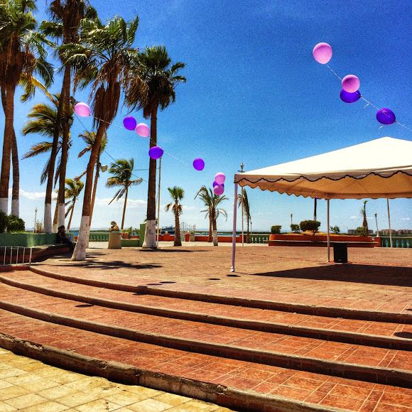 10 Best things to do in la Paz Mexico Malecon