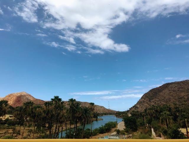 Baja California Road Trip Itinerary mulege
