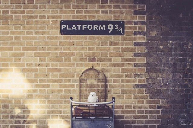 Things to do near kings cross st pancras london platform 9 and 3-4