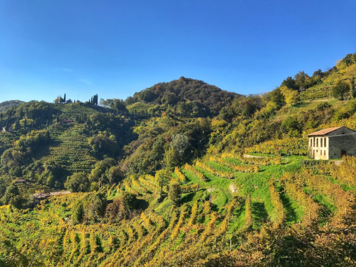 Wine tour from Venice Prosecco Region Visit Prosecco Italy Views