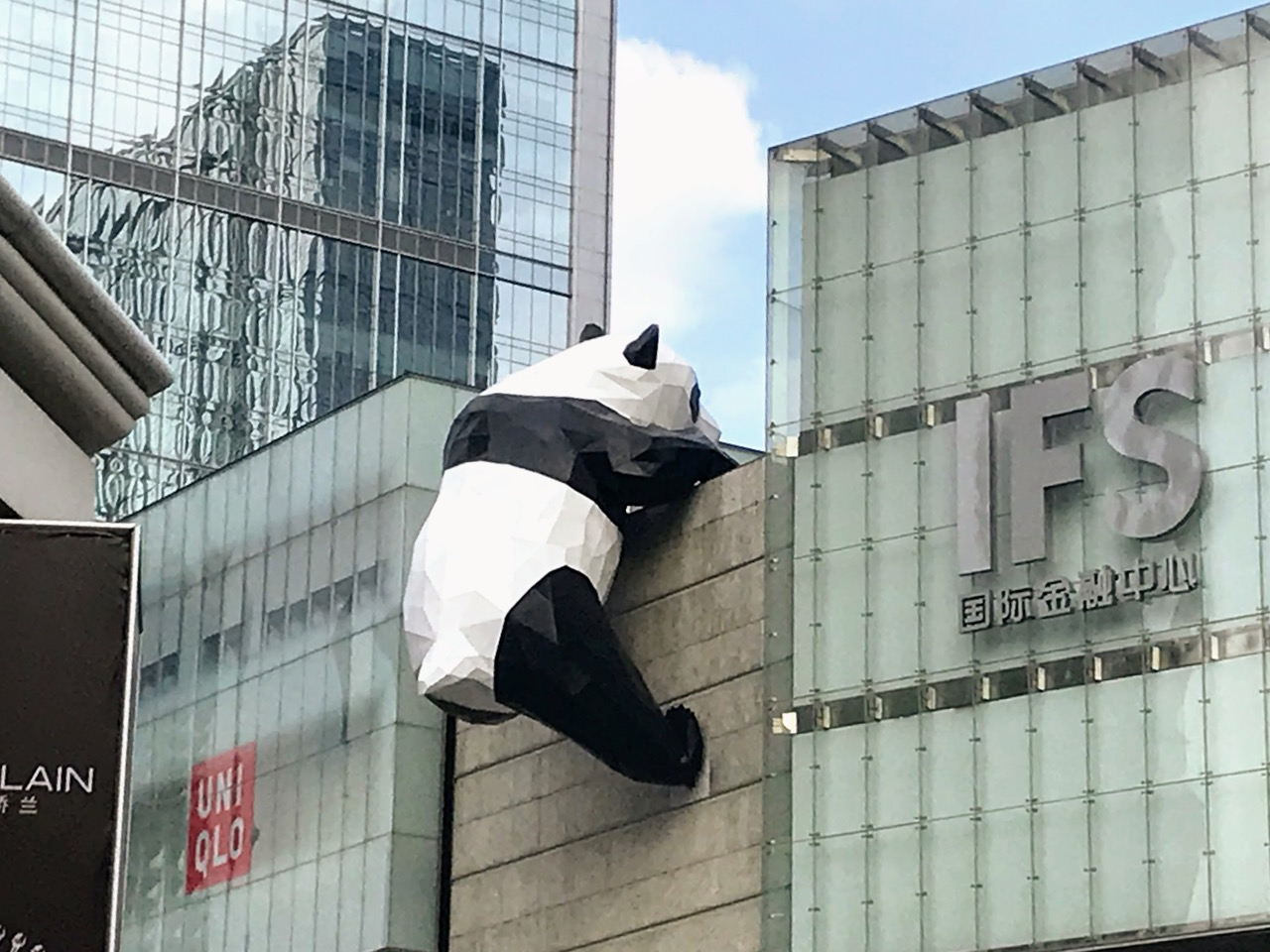 How To Do Your Own Panda Tour in Chengdu 20