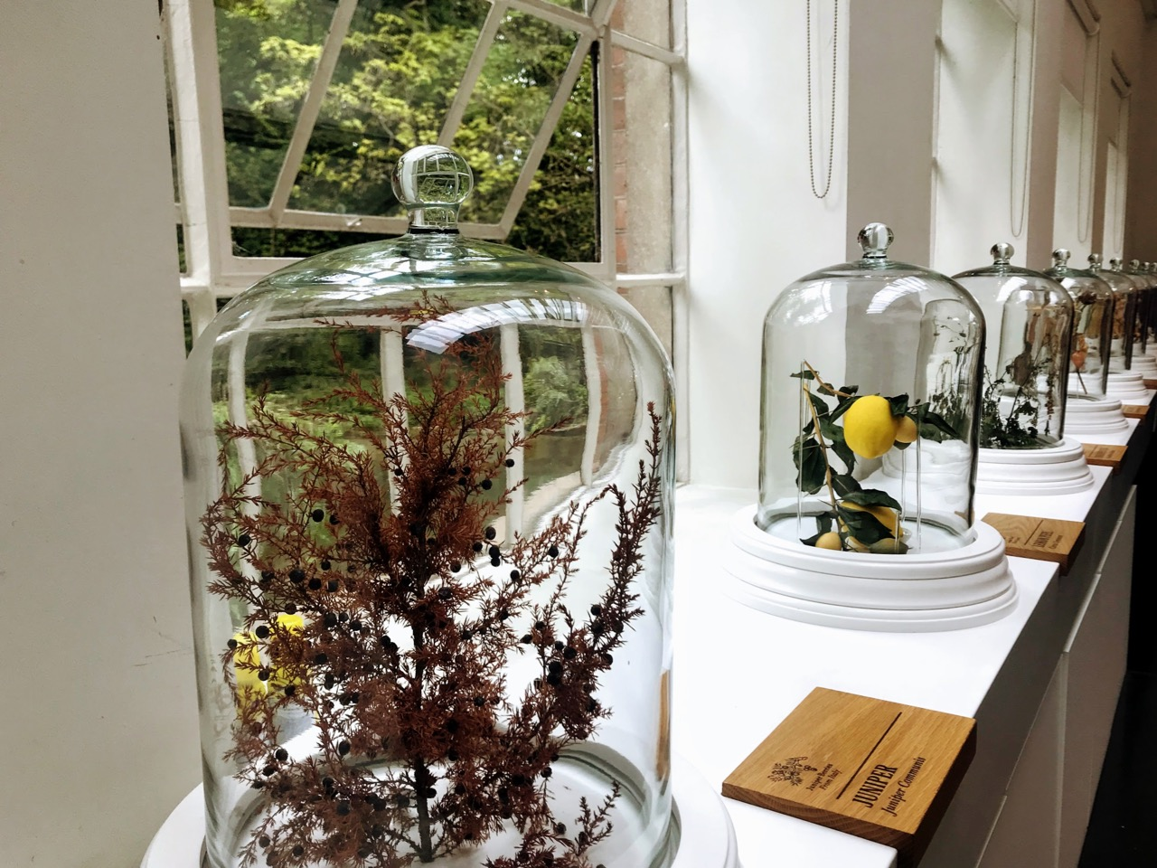 Planning a Bombay Sapphire Distillery Tour at Laverstoke Mill - dry botanicals room