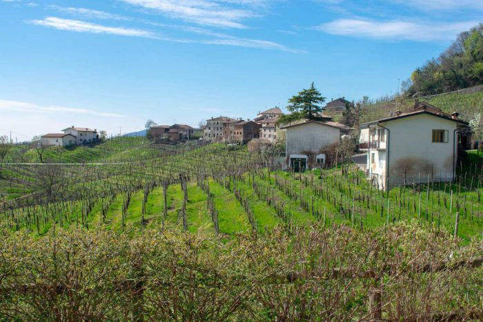 Prosecco hills in northern Italy