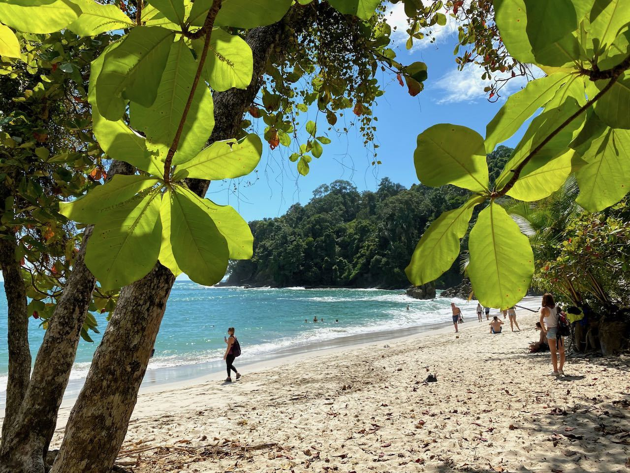 View of sandy beach through the trees in Manuel Antonio National Park