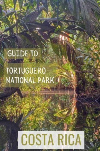canals fo tortuguero national park in Costa Rica