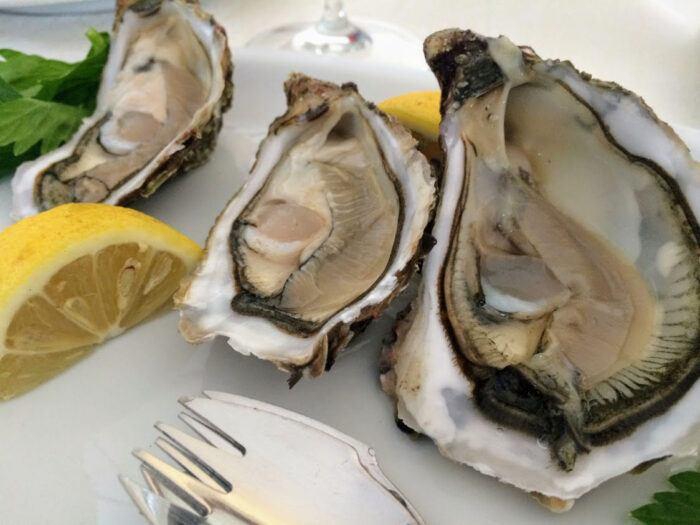 Oysters in castelsardo Sardinia Italy