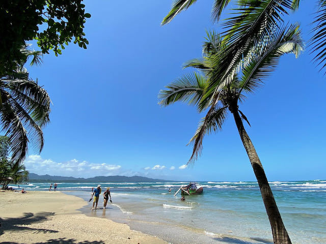 blue sky and palm trees on beach in Puerto Viejo Costa Rica